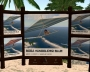 Bora bora Public Beach 008