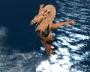 animation-dancer2_005
